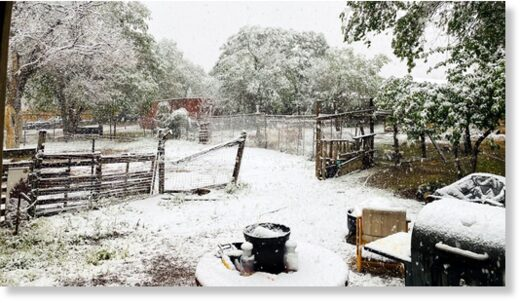 Jennifer Baker submitted this photo of snow in Coleville, Calif.