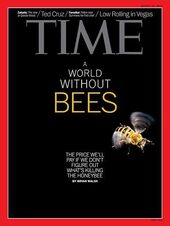 time magazine bees