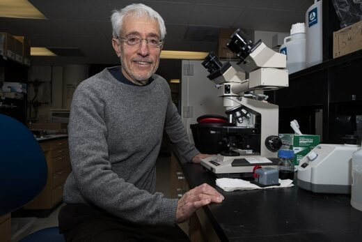 University of Iowa researcher, Stanley Perlman sars research covid