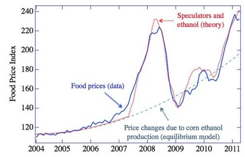 food price speculation