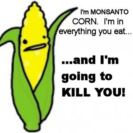 Monsanto's GMO Corn are Banned in Russia