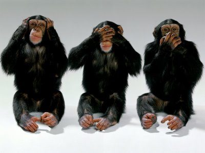 monkey see no evil,etc