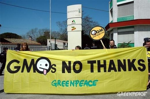 a history of greenpeace and its development