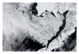 Bering Sea Ice Covered