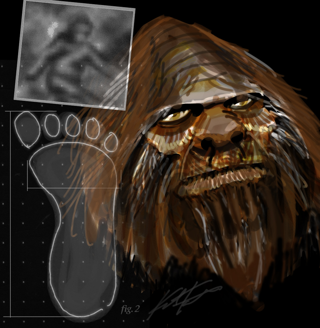 'Bigfoot' is part human, DNA study claims