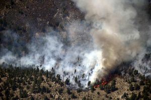Seen from a helicopter, trees burn and plumes of smoke rise over the High Park Fire west of Fort Collins.