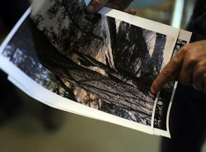 Gov. John Hickenlooper shows a photo of the tree hit by lightning that started the High Park Fire.