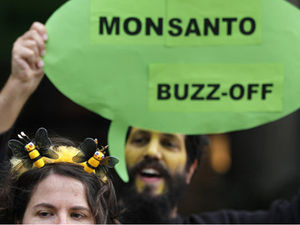 protest outside Monsanto's office