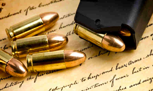 Nationwide plan for gun confiscation exposed