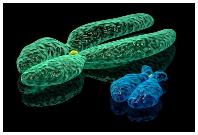 Chromosome Study Traces All Men To Man Who Lived 135,000 ...