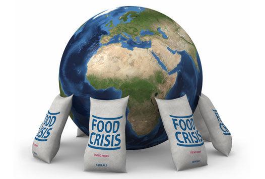essays on global food crisis
