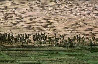 Image result for desertification china